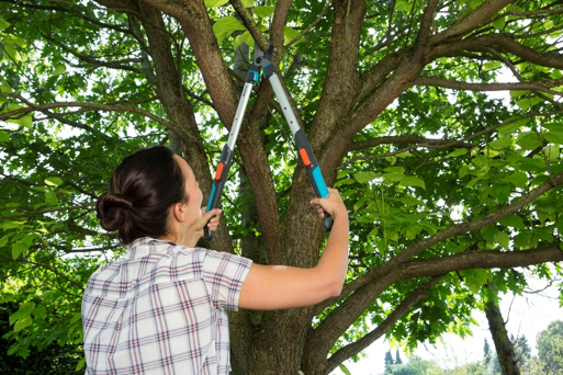Stay Sharp: New GARDENA range of pruning loppers - Incredible ...